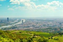 维也纳的看法从维也纳森林的 免版税库存图片