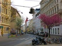 从维也纳的街道视图 库存图片