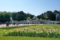 维也纳,奥地利- 2017年4月30日, :在Schoenbrunn公园伟大的分配为花坛的区域的海王星喷泉Neptunbrunnen与 库存照片
