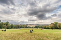 维也纳,奥地利- 2016年10月08日:美泉宫和庭院在有公园和花装饰的维也纳 观光的对象  免版税库存图片