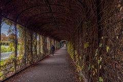 维也纳,奥地利- 2016年10月08日:美泉宫和庭院在有公园的维也纳 观光的对象在维也纳,奥地利 图库摄影
