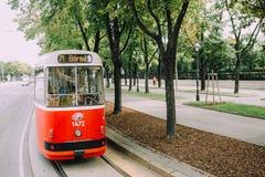 维也纳,奥地利- 2014年6月 红色电车在著名路线Ringstrasse乘坐 免版税图库摄影
