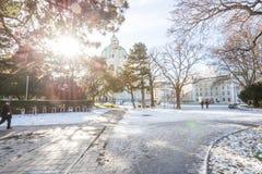 维也纳,奥地利- 8, 1月 维也纳街道视图在一个晴朗的冬日,未知人,散步在冬天2016年 库存图片