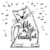 也corel凹道例证向量 与动画片猫的正面卡片与鱼 书法词生活美好 库存照片