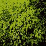 也corel凹道例证向量 绿色留下纹理 现代模式 皇族释放例证