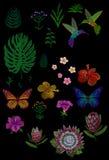 习惯热带花设计 集合被隔绝的异乎寻常的花离开植物,蜂鸟蝴蝶 Monstera棕榈木槿 皇族释放例证