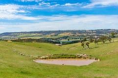 乡下全景风景在南澳大利亚 免版税图库摄影