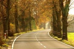 乡下公路。 免版税库存照片