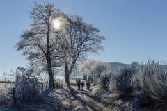 乡下公路冬天 图库摄影