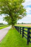 乡下公路包围了马农场 免版税库存照片
