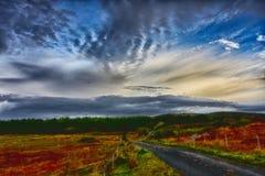 乡下公路和石南花草甸的美好的风景在蓝色多云天空的 免版税库存图片