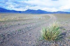 乡下公路在一片岩石沙漠 库存照片