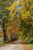 乡下公路在一晴朗的秋天天 免版税库存图片
