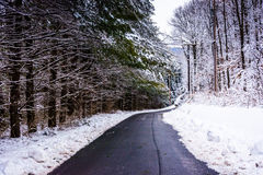 乡下公路在冬天期间在农村卡洛尔县,马里兰 免版税库存图片