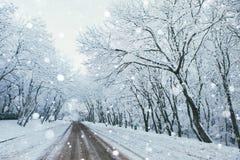 乡下公路在冬天 免版税图库摄影