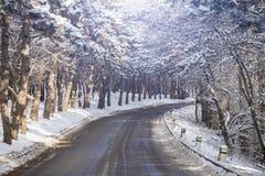 乡下公路在冬天 库存图片
