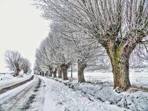 乡下公路在冬天 免版税库存图片