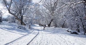 乡下公路在冬天01 库存照片