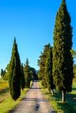 乡下公路在托斯卡纳 免版税库存照片