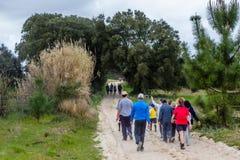 乡下公路在有植被的葡萄牙在双方 22个项目符号口径组白色 图库摄影