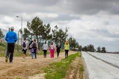 乡下公路在有植被的葡萄牙在双方 22个项目符号口径组白色 免版税库存图片