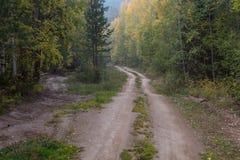 乡下公路在秋天森林里 免版税图库摄影