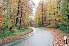 乡下公路在秋天 库存图片