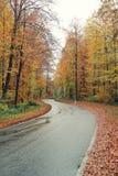 乡下公路在秋天 免版税库存照片