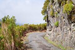 乡下公路在马德拉岛海岛 图库摄影