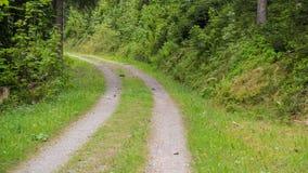 乡下公路小道路与 免版税库存照片