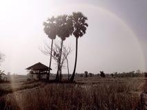 乡下公路泰国 图库摄影