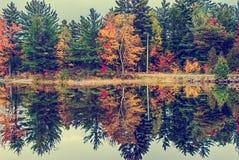 乡下公路由一个湖在秋天-葡萄酒负责 免版税库存图片