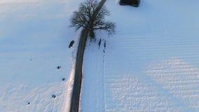 乡下公路通过冬天风景,巴伐利亚,德国 股票视频