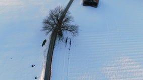 乡下公路通过冬天风景,巴伐利亚,德国 股票录像