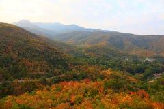 乡下公路通过有五颜六色的秋季秋天风景森林的山和小村庄,农村清迈,泰国 库存照片