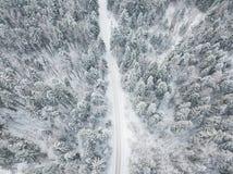 乡下公路通过森林鸟瞰图冬天风景 库存图片