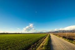 乡下公路通过领域 库存图片
