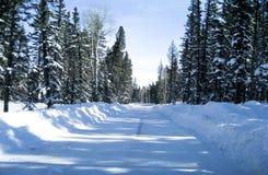 乡下公路雪 库存照片