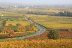 绕乡下公路,德国酒路 库存图片
