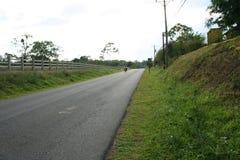 乡下公路 库存照片