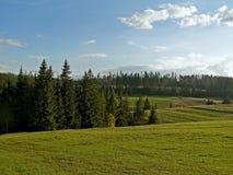 乡下和草甸的看法高山的 免版税库存图片