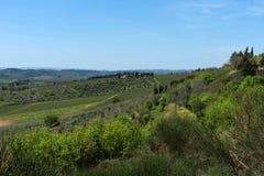 乡下和葡萄园在Chianti地区,托斯卡纳,意大利全景  免版税库存照片