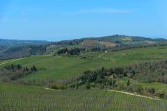 乡下和葡萄园在Chianti地区,托斯卡纳,意大利全景  库存照片