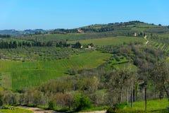 乡下和葡萄园在Chianti地区,托斯卡纳,意大利全景  免版税图库摄影