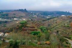 乡下和葡萄园杜罗河谷的 库存照片