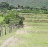乡下在不丹 免版税库存图片