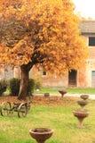 乡下在克雷莫纳,意大利 Castelponzone村庄 库存图片