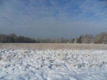 乡下在冬天 免版税库存图片