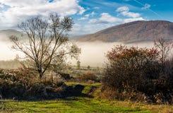 乡下在有雾的早晨 库存照片