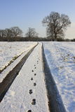 乡下多雪的跟踪 免版税库存图片